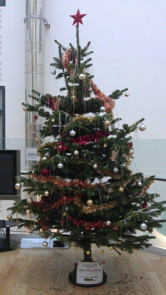 SendMeAChristmasTree.co.uk donates trees to Rockinghorse charity