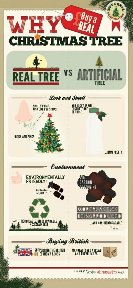 Why Buy a Real Christmas Tree?