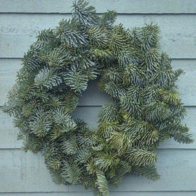 Plain Christmas Wreath