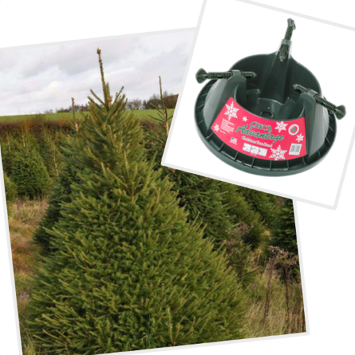Christmas tree plus stand deal