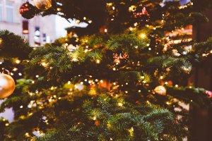 fresh christmas tree tips
