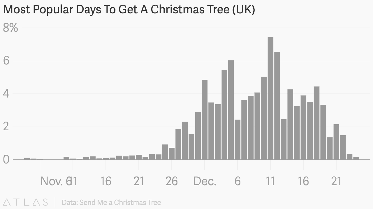When do most people put their Christmas tree up?